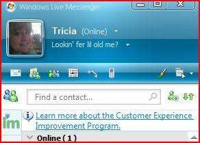 Hvordan bruke Windows Live Call
